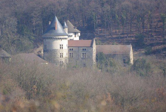 chateau-de-dizimieu-38_a